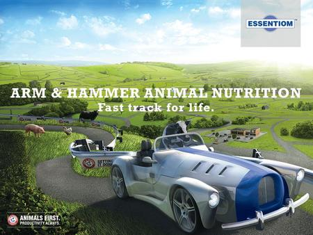 ARM & HAMMER ANIMAL NUTRITION Fast track for life.