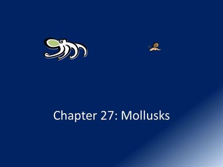 Chapter 27: Mollusks. I. Taxonomy Kingdom: Animalia – Phylum: Mollusca (soft)