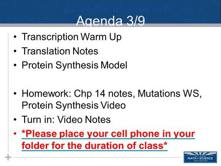 Agenda 3/9 Transcription Warm Up Translation Notes Protein Synthesis Model Homework: Chp 14 notes, Mutations WS, Protein Synthesis Video Turn in: Video.