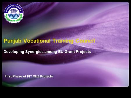 First Phase of FIT /GIZ Projects Punjab Vocational Training Council Developing Synergies among EU Grant Projects.