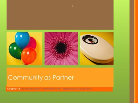 Chapter 18 Promoting Healthy Partnerships With Marginalized Groups Part 2 Community as Partner 1.