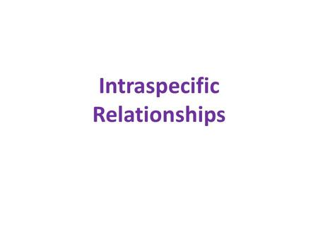 Intraspecific Relationships