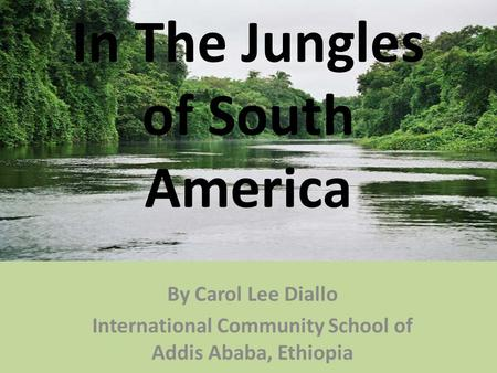 By Carol Lee Diallo International Community School of Addis Ababa, Ethiopia In The Jungles of South America.