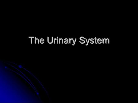 The Urinary System. Urinary System Structures pair of kidneys pair of kidneys remove substances from blood, form urine, help regulate certain metabolic.
