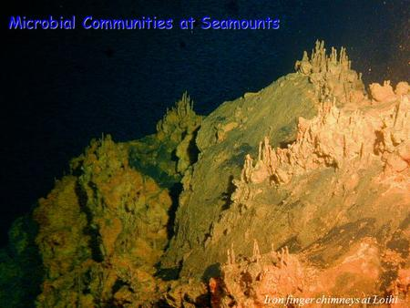 Iron finger chimneys at Loihi Microbial Communities at Seamounts.