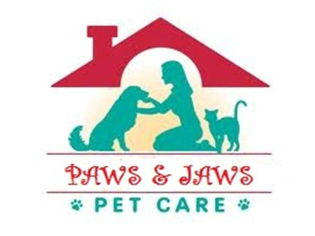 Vision We will be leaders in the pet care profession by promising to provide the very best, most reliable, and most convenient care to your beloved pets.