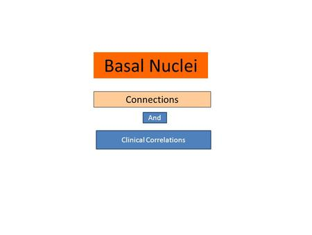 Basal Nuclei Connections And Clinical Correlations.