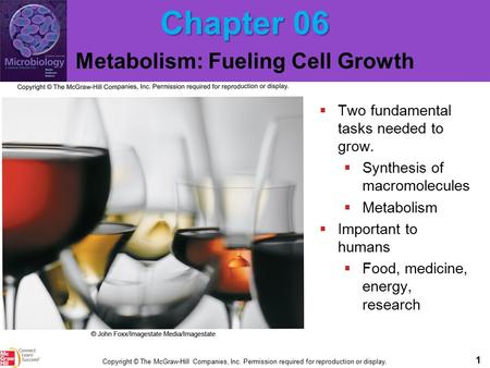 1 Copyright © The McGraw-Hill Companies, Inc. Permission required for reproduction or display. Chapter 06 Metabolism: Fueling Cell Growth  Two fundamental.