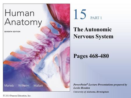 The Autonomic Nervous System Pages