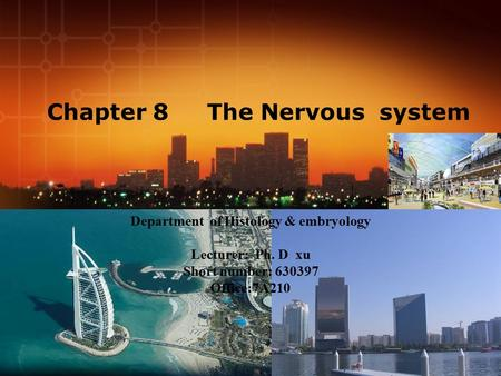 Chapter 8 The Nervous system Department of Histology & embryology Lecturer: Ph. D xu Short number: 630397 Office:7A210.