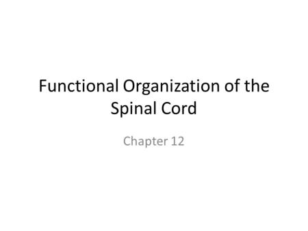 Functional Organization of the Spinal Cord Chapter 12.