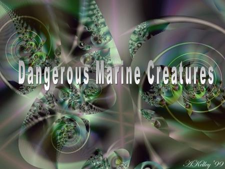 OVERVIEW OF MARINE HAZARDS There are a number of hazardous creatures in the sea. Many can cause serious harm to unaware or inattentive divers. Some may.