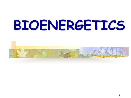 1 BIOENERGETICS. 2 What is Bioenergetics? energyliving systems organisms The study of energy in living systems (environments) and the organisms (plants.