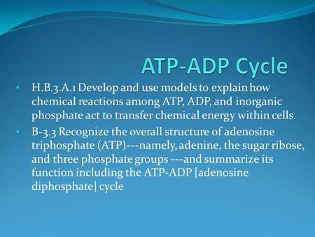 H.B.3.A.1 Develop and use models to explain how chemical reactions among ATP, ADP, and inorganic phosphate act to transfer chemical energy within cells.
