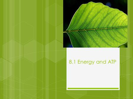 8.1 Energy and ATP. Autotrophs and Heterotrophs  Energy that living things need, originates from the sun  Autotrophs- trap energy from the sun to make.