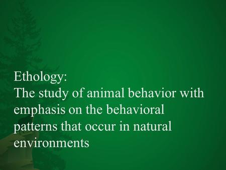 Ethology | Definition of Ethology by Merriam-Webster