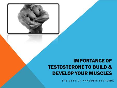 IMPORTANCE OF TESTOSTERONE TO BUILD & DEVELOP YOUR MUSCLES THE BEST OF ANABOLIC STEROIDS.