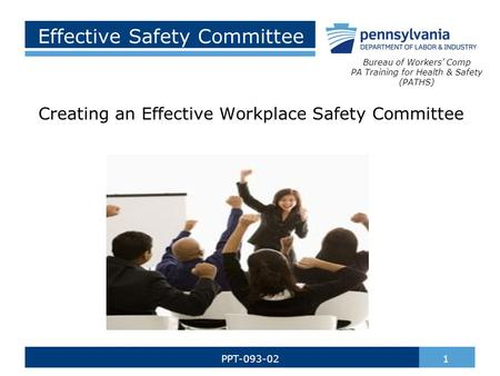 Effective Safety Committee