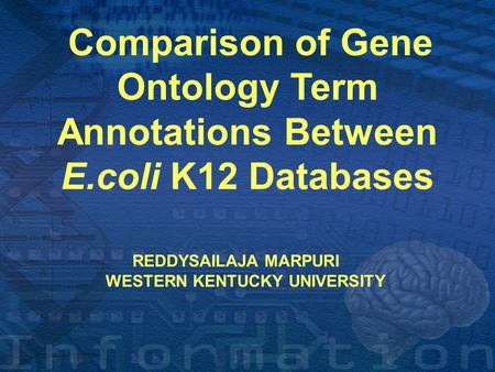 ` Comparison of Gene Ontology Term Annotations Between E.coli K12 Databases REDDYSAILAJA MARPURI WESTERN KENTUCKY UNIVERSITY.