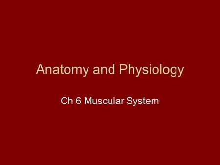 Anatomy and Physiology Ch 6 Muscular System. Muscle Types Skeletal Muscle –Attach to the skeleton (skeletal)‏ –Striated –Voluntary Reflexes though! –Long.