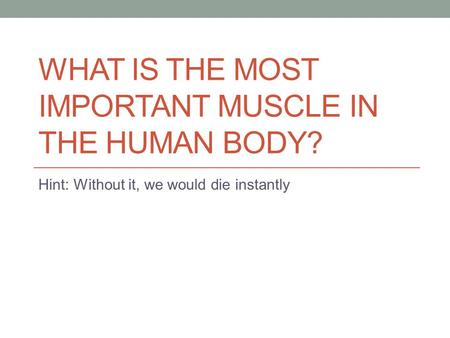 WHAT IS THE MOST IMPORTANT MUSCLE IN THE HUMAN BODY? Hint: Without it, we would die instantly.