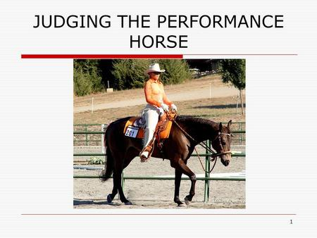 1 JUDGING THE PERFORMANCE HORSE. 2 Possible Classes  Western Pleasure  Hunter Under Saddle  Hunter Hack  Reining  Western Riding  Hunt Seat Equitation.