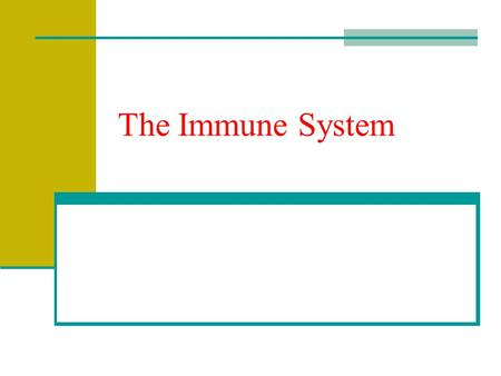 The Immune System. Protects our bodies from pathogens – disease causing agents May be bacteria, viruses, protists, fungi, etc Response could be nonspecific.