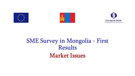 SME Survey in Mongolia - First Results Market Issues.