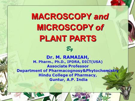 MACROSCOPY and MICROSCOPY of PLANT PARTS MACROSCOPY and MICROSCOPY of PLANT PARTS By Dr. M. RAMAIAH, M. Pharm., Ph.D., IPDRA, DICT(USA) Associate Professor.
