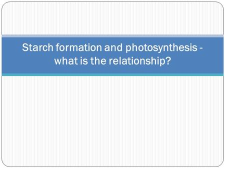 Starch formation and photosynthesis - what is the relationship?