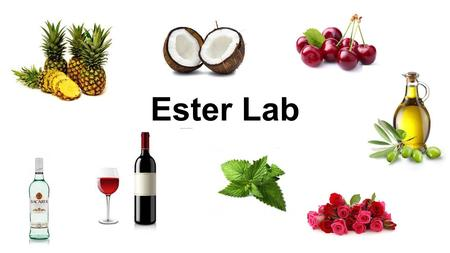 "Ester Lab. Preparation of Esters Lab Esters are responsible for the ""fruity"" odours and flavours of many naturally occurring products. Chemists can reproduce."