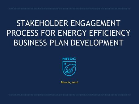 STAKEHOLDER ENGAGEMENT PROCESS FOR ENERGY EFFICIENCY BUSINESS PLAN DEVELOPMENT March, 2016.