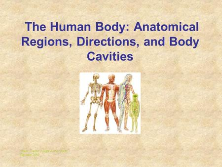 The Human Body: Anatomical Regions, Directions, and Body Cavities Credit: Carlos J Bidot Author 2006 Revised 2010.
