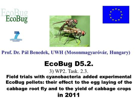 EcoBug D5.2. 3) WP2. Task. 2.3. Field trials with cyanobacteria added experimental EcoBug pellets: their effect to the egg laying of the cabbage root fly.