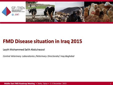 Middle East FMD Roadmap Meeting Doha, Qatar 1-3 December 2015 1 FMD Disease situation in Iraq 2015 Layth Mohammed Salih Abdulrasool Central Veterinary.