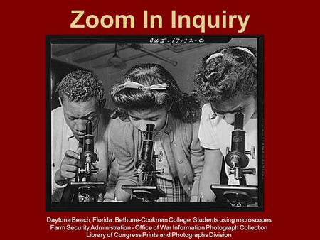 Zoom In Inquiry Daytona Beach, Florida. Bethune-Cookman College. Students using microscopes Farm Security Administration - Office of War Information Photograph.