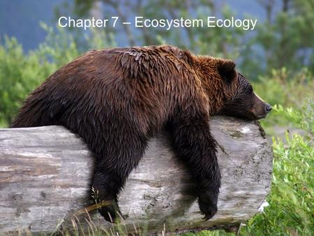 Chapter 7 – Ecosystem Ecology. © 2013 Pearson Education, Inc. 7.1 Ecosystem Ecology and Biogeochemistry Biosphere –All organisms and nonliving environment.