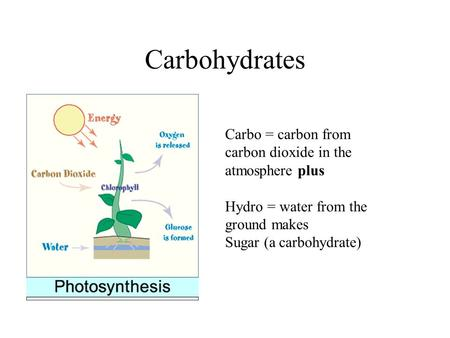 Carbohydrates Carbo = carbon from carbon dioxide in the atmosphere plus Hydro = water from the ground makes Sugar (a carbohydrate)