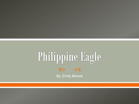  By: Emily Moore.  The Philippine Eagle can only be found on certain Philippine islands of Luzon, Leyte, Mindanao and Samar.  Biotic Factors: trees,