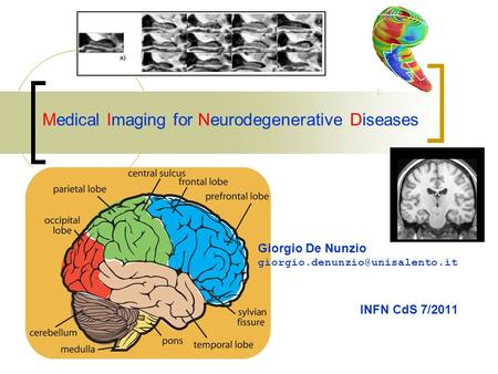 Medical Imaging for Neurodegenerative Diseases INFN CdS 7/2011 Giorgio De Nunzio