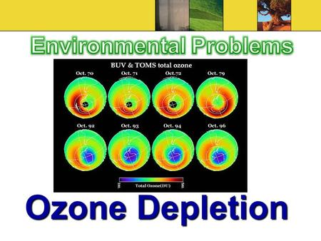 Ozone Depletion. Ozone Layer Ozone layer absorbs 97% to 99% of ultraviolet (UV) radiation from the sunOzone layer absorbs 97% to 99% of ultraviolet (UV)