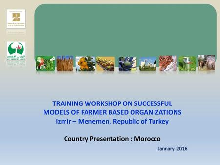 TRAINING WORKSHOP ON SUCCESSFUL MODELS OF FARMER BASED ORGANIZATIONS Izmir – Menemen, Republic of Turkey Country Presentation : Morocco Jannary 2016.