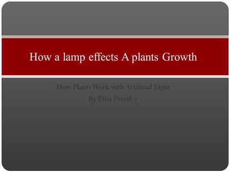 How Plants Work with Artificial Light By Elisa Pressley How a lamp effects A plants Growth.