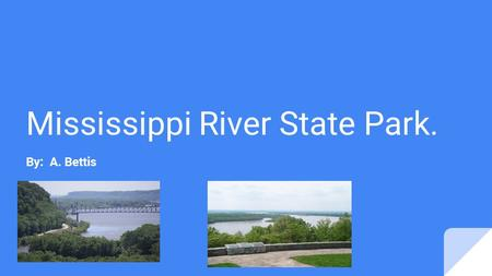Mississippi River State Park. By: A. Bettis. Location.. Mississippi River State Park can be founded on 2955 Highway 44, Marianna, AR 72360.
