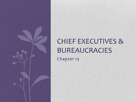 Chapter 13 CHIEF EXECUTIVES & BUREAUCRACIES Qualification Natural born citizen Lived in the USA 14 years 35 years old Youngest to enter Teddy Roosevelt.