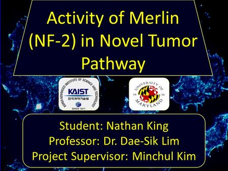 Student: Nathan King Professor: Dr. Dae-Sik Lim Project Supervisor: Minchul Kim Activity of Merlin (NF-2) in Novel Tumor Pathway.