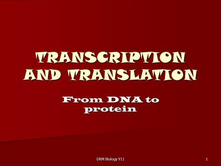 DRM Biology Y11 1 TRANSCRIPTION AND TRANSLATION From DNA to protein.