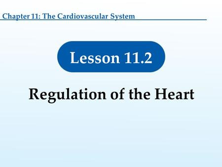 Lesson 11.2 Regulation of the Heart Chapter 11: The Cardiovascular System.