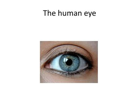 The human eye. What are the main parts of the human eye? Ciliary muscle Cornea Iris Lens Optic nerve Pupil Retina Sclera Vitreous humor Aqueous humor.