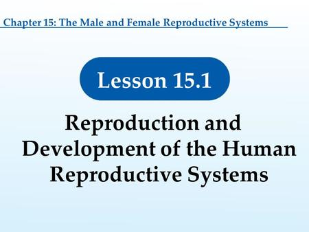 Lesson 15.1 Reproduction and Development of the Human Reproductive Systems Chapter 15: The Male and Female Reproductive Systems.